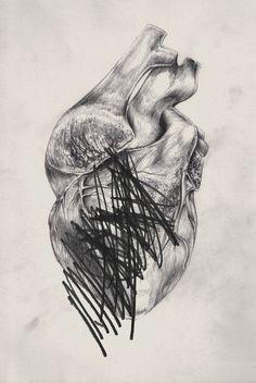 Anatomy 50x70