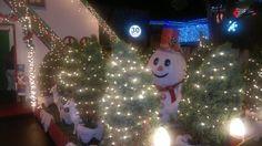 Luzes de Natal Bairro niterói
