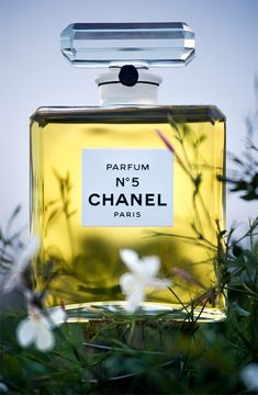 A journey through the origins of CHANEL's creations capturing the charismatic personality and irreverent spirit of Mademoiselle Chanel and Karl Lagerfeld. Throughout the duration of the Mademoisell. Coco Chanel, Chanel Mademoiselle, Chanel Brand, Chanel No 5, Chanel Paris, Perfume And Cologne, Perfume Bottles, Karl Lagerfeld, Parfum Chanel