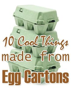 10 Cool Things Made From Egg Cartons