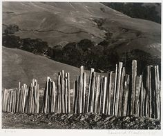 Edward Weston, Ranch, Old Big Sur Road, 1935; photograph; gelatin silver print, 7 9/16 in. x 9 7/16 in. (19.21 cm x 23.97 cm); Collection SFMOMA, Gift of Mrs. Drew Chidester; © 1981 Center for Creative Photography, Arizona Board of Regents Source: http://www.sfmoma.org/explore/collection/artwork/14683#ixzz2BzXaacZQ San Francisco Museum of Modern Art