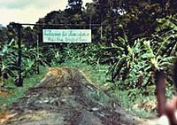 November 18, 1978 – In Jonestown, Guyana, Jim Jones led his Peoples Temple cult to a mass murder-suicide that claimed 918 lives in all, 909 of them in Jonestown itself, including over 270 children. Congressman Leo J. Ryan is murdered by members of the Peoples Temple hours earlier.