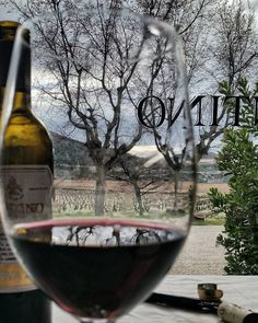 If you visit Rioja remember that only a few wineries offer wine tastings without do a tour #tourism #winetours #travel #wine #winelover #turismo #enoturismo #experience #winetastelovers #riojawine #gastronomía #visitSpain #vino #viaje #tapas #winetasting #instariojawine #gastronomy #instawinetours #winecountry #wineries #worldplaces #winetrip #winetravel #viajar #grapevines #winetourism #wineregion #lp