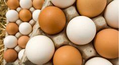 Gjërat që i ndodhin trupit tuaj kur hani vezë - http://alboz.co/gjerat-qe-ndodhin-trupit-tuaj-kur-hani-veze/