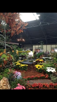 Flower show at Sonoma County Fair