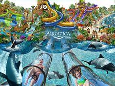biggest water slides - Google Search
