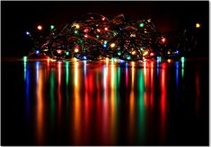 Nite Lites in Grand Rapids Is Michigan's Largest Christmas Lights Display