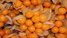 Las golden berries son frutos de plantas silvestres. Son redondos y pequeños, de sabor dulce. Las golden berries provienen del continente americano, pero su consumo se ha popularizado, promovido y extendido a lo largo del mundo debido a sus numerosos beneficios para la salud. Hay muchos tipos de golden berries, y han sido consumidas y cultivadas desde la época precolombina. Las golden berries son características de la zona de los Andes, en especial de Perú y Colombia. En el pasado eran…