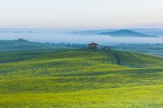 Farmhouse in Tuscany at sunrise - Morning fog view on farmhouse at Valley d?Orcia in Tuscany, Italy.