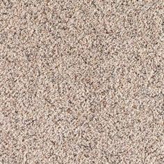 home decorators collection legends lane i color reflection texture 12 ft carpet