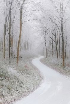45 trendy ideas for winter landscape photography wonderland paths Winter Szenen, Winter Love, Winter White, Winter Walk, Winter Cabin, Snow White, Deep Winter, Beautiful World, Beautiful Places