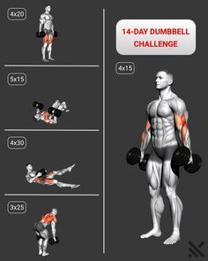Abs And Cardio Workout, Gym Workouts For Men, Plyometric Workout, Workout Routine For Men, Gym Workout Videos, Gym Workout For Beginners, Weight Training Workouts, Biceps Workout, Fitness Workouts