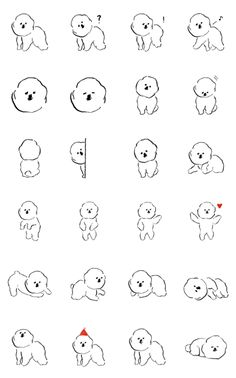 """MAMBO"" is a bichon frize dog drawn by illustrator Izumi Shiokawa. Animal Sketches, Animal Drawings, Cute Drawings, Pencil Illustration, Graphic Illustration, Art Nouveau Mucha, Giant Dog Breeds, Dog Line, Line Sketch"