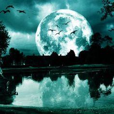 Night moon.... WOW!!!!