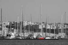 Adriatica in porto Black and White #velistipercaso