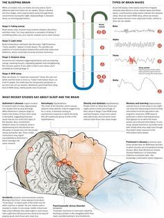 Chronic sleep deprivation makes adults susceptible to degenerating brain diseases. Shortage of sleep has been linked to health problems as different as diabetes and Alzheimer's disease. Chronic Sleep Deprivation, Sleep Apnea, Brain Diseases, Brain Waves, Brain Health, Snoring, Health Problems, Fibromyalgia, Disorders