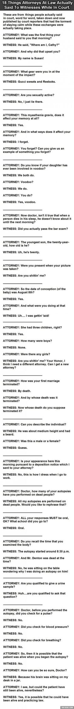 18 Things Actually Said To Witnesses In Court. (Truth or not, this is funny)