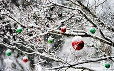 Christmas wallpapers free- Vánoční tapety na plochu zdarma Christmas wallpapers free - Christmas Time Is Here, Christmas Is Coming, Little Christmas, All Things Christmas, Winter Christmas, Christmas Lights, Christmas Wreaths, Christmas Crafts, Christmas Decorations