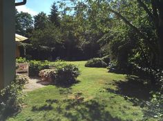 Skandiavägen 4 D Villa, Plants, Plant, Villas, Planting, Planets