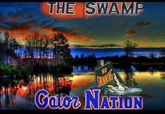 Gator Nation Fla Gators, Florida Gators Football, Gator Football, Florida Gators Wallpaper, College Football Season, College Sport, Gymnastics Team, Female Gymnast, Football Pictures