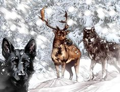 Day 16: Favorite Animagus: there's a debate between James Potter and Sirius Black...I love that Sirius is an energetic and loyal dog just as much as I love that James is the noble stag...