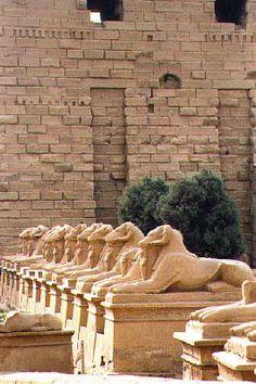 Ram- headed sphinxes - Karnak temple www.egypttravelgateway.com info@egypttravelgateway.com
