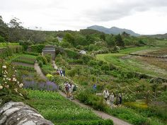 Kitchen garden on the shore of Loch Ewe - love the layout of the gardens