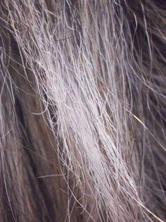 Como recuperar um cabelo emborrachado e elástico dicas