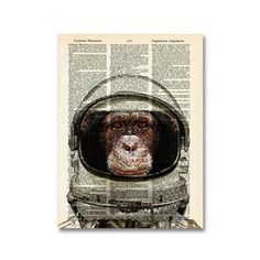 collageOrama < Back to Pets Highly Literate Animal Prints Typography Quotes, Print Artist, Upcycled Vintage, Hand Designs, Graphic Design Art, Animal Prints, Astronaut, Art Photography, Whimsical