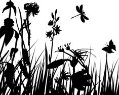 Image Details ISS_3459_00858 - Vector grass silhouettes backgrounds with butterflies Grass Silhouette, Silhouette Images, Wall Candy, Illustrations, Childrens Hospital, Painting Inspiration, Vector Free, Stock Photos, Black And White
