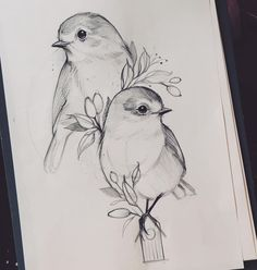 Art Discover 3 birds instead of 2 Pencil Drawings Of Animals Bff Drawings Cool Art Drawings Art Drawings Sketches Animal Sketches Love Birds Drawing Bird Sketch Arte Pop Acrylic Art Disney Drawings Sketches, Girl Drawing Sketches, Girly Drawings, Dark Art Drawings, Art Drawings Sketches Simple, Animal Sketches, Simple Pencil Drawings, Bird Pencil Drawing, 2 Pencil