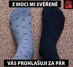 https://www.facebook.com/kisshady.cz/photos/a.392296581522.171395.251833171522/10153469322786523/?type=3