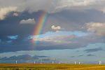 Regenbogen über Windpark, Insel Rügen - Bild-Nr. 8592