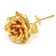 Beautiful Golden Rose Gold Foil Lasts Forever With Gift Box And Bag Creative Unique Romantic Anniversary Birthday Or Valentine& Day Gift Tapete Gold, 24k Gold Rose, Gold Everything, Fleurs Diy, Romantic Anniversary, Gold Aesthetic, Foto Art, Wedding Supplies, Party Supplies