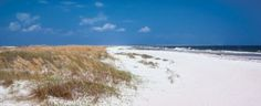 Dr. Beach: America's Foremost Beach Expert.  Top 10 Beaches - #4: St, George Island State Park in NW Florida