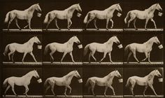 The World's Oldest Photography Museum Goes Digital