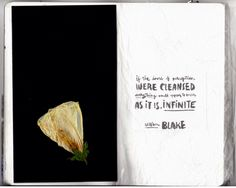 pressed flower & william blake quote in my sketchbook #collage #mixedmedia