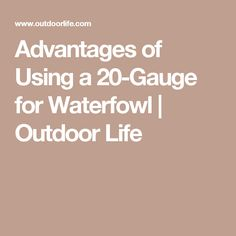 Advantages of Using a 20-Gauge for Waterfowl | Outdoor Life