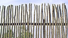 Creative ways to use branches, twigs and sticksDon't just toss your tree debris over the fence. Use it to make a fence and other cool things.