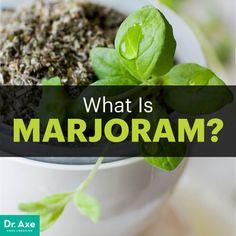 Marjoram essential oil - Dr. Axe http://www.draxe.com #health #holistic #natural