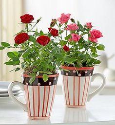 usando canecas como vaso para pequenas plantas.