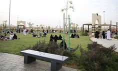 صحيفة سبق: طرح أكشاك مؤقتة للاستثمار في منتزه ردف الطائف - أخبار السعودية