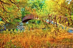 This bridge looks like a great opportunity for a lovely walk and lots of picture taking.
