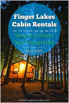 Looking for cabin rentals in the Finger Lakes, NY? How about staying on property at Buttonwood Grove Winery near Cayuga Lake for an unforgettable experience? Check out this guide to Cayuga Lake for more details about these cabins in the Finger Lakes. Summer Vacation Spots, Vacation Ideas, Seneca Lake, Finger Lakes, Lake Cabins, Lake George, New York Travel, Lake Life, Cabin Rentals