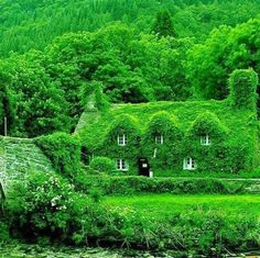 A 500-year-old teahouse in #Wales #travel #Europe Repinned by http://www.iconiceurope.com/