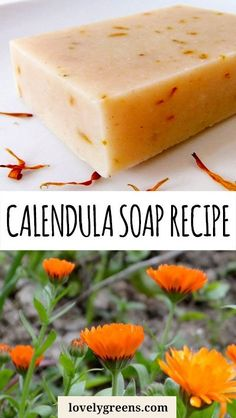 Recipe and instructions for how to make calendula soap with dried or fresh flower petals. This calendula soap recipe turns out a natural yellow-orange color Diy Savon, Savon Soap, Soap Making Recipes, Homemade Soap Recipes, Homemade Paint, Diy Beauté, Soap Making Supplies, Cold Process Soap, Soap Molds