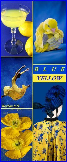 Colour Pallette, Color Combos, Mellow Yellow, Blue Yellow, Color Harmony, Pantone, Himmelblau, Duck Egg Blue, Colour Board