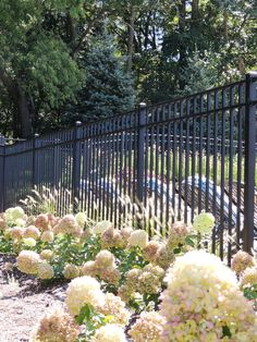 Fence Consultants of West Michigan provides and installs almost every type of maintenence free fence and railing products. Aluminum Fence, Fences, Outdoor Ideas, Gates, Michigan, Yard, Plants, Black, Design