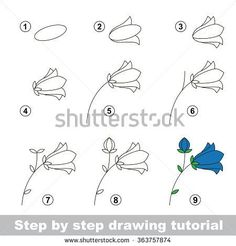 Step by step drawing tutorial. How to draw a Bluebell flower – … Step by step drawing tutorial. How to draw a Bluebell flower – stock vector Easy Flower Drawings, Flower Drawing Tutorials, Easy Drawings, Drawing Flowers, Flower Drawing For Kids, Drawing Tutorials For Kids, Flower Sketches, Doodle Drawings, Doodle Art