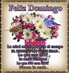 SUEÑOS DE AMOR Y MAGIA: Hermoso Domingo Viernes Gif, Good Morning Good Night, Beautiful Day, Sunday, Calm, Gifts, Blessed Sunday, Bow Braid, Buen Dia